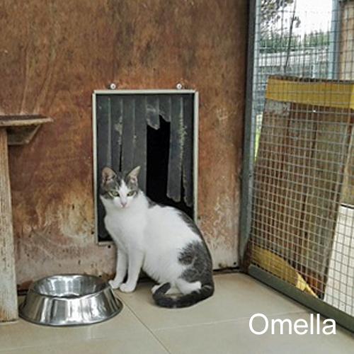 ornella_001.jpg