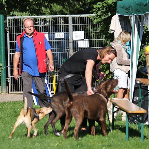 Sommerfest_anfang_2015-08-23-08h40m35.jpg