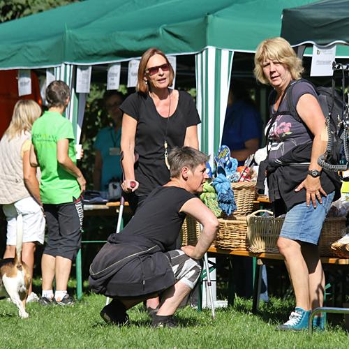 Sommerfest_anfang_2015-08-23-09h35m18.jpg