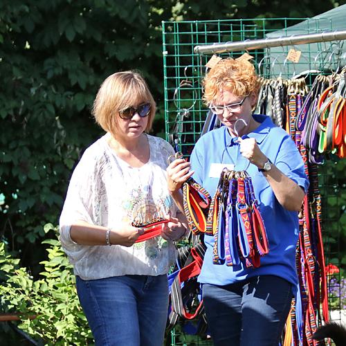 Sommerfest_anfang_2015-08-23-09h39m22.jpg