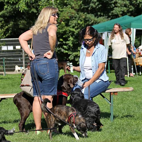 Sommerfest_anfang_2015-08-23-09h40m11.jpg
