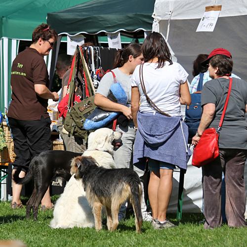 Sommerfest_anfang_2015-08-23-10h23m45.jpg