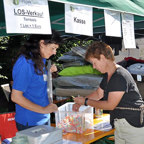 Sommerfest_anfang_2015-08-23-10h37m26.jpg