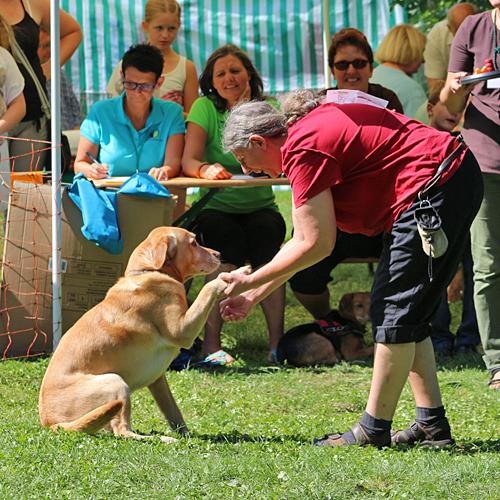 Sommerfest_Spiel_2015-08-23-14h19m54.jpg