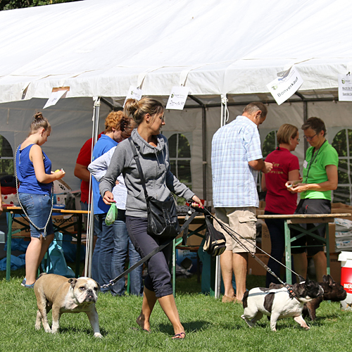 Sommerfest_Allgemein_2015-08-23-11h08m50.jpg
