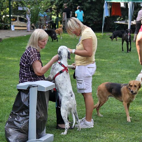 Sommerfest_Allgemein_2015-08-23-14h23m36.jpg
